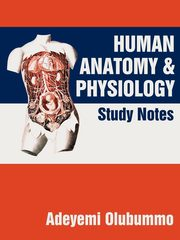 Human Anatomy and Physiology, Olubummo Adeyemi