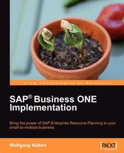 SAP Business ONE Implementation, Niefert Wolfgang